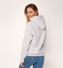 Champion Hooded Sweatshirt Melange Grey-2